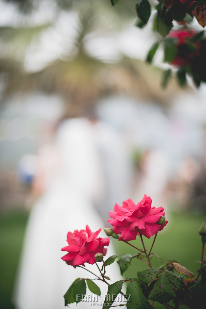 105 Wedding Photographer. Wedding photographer in Granada. Wedding photographer in Otivar. Wedding photographer in Spain. Wedding photojournalism in Granada. Wedding photojournalism in Spain. Wedding photojournalist in Granada. Palacete de Cazulas