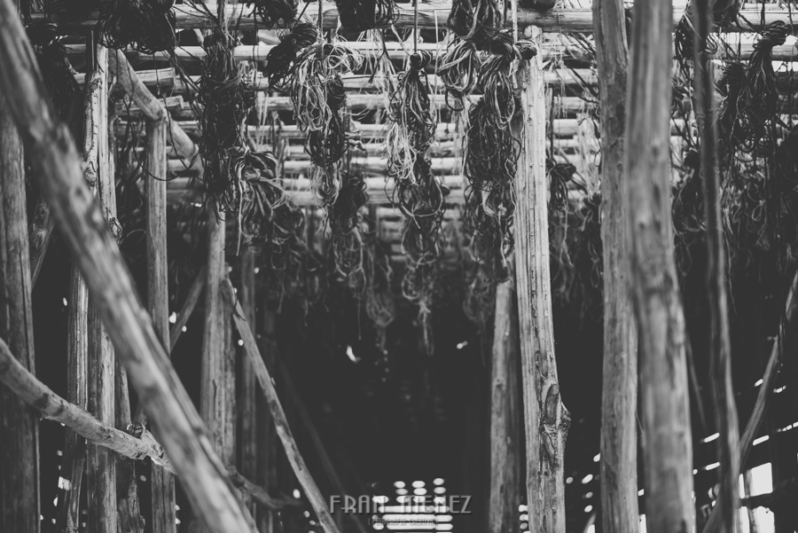 Fotografias de Pre Boda en Granada. Fran Menez Fotografo de Bodas 1