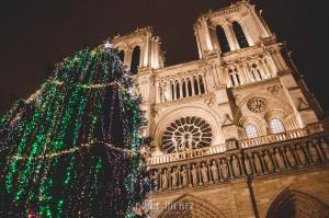 Fotografías de Paris. Fran Ménez Fotógrafo en Paris. 12 Notre Dame