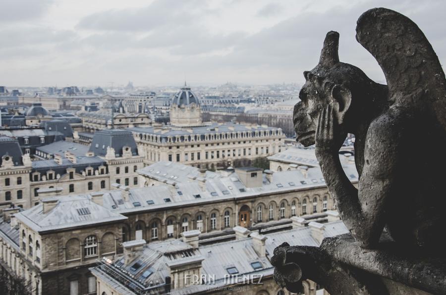 Fotografías de Paris. Fran Ménez Fotógrafo en Paris. 38 Gárgola Gargoyle Gorgouille Notre Dame