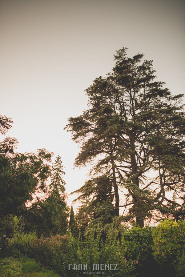 Fotografias de Boda en el Parador de Granada. Patty y Alex. Fran Menez Fotógrafo 206