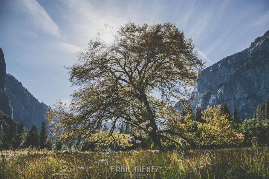 Ruta de los Parques del Oeste. Viajar a EEUU Yosemite Grand Canyon Monument Valley Zion San Francisco Las Vegas Los Angeles Lake Powell 149