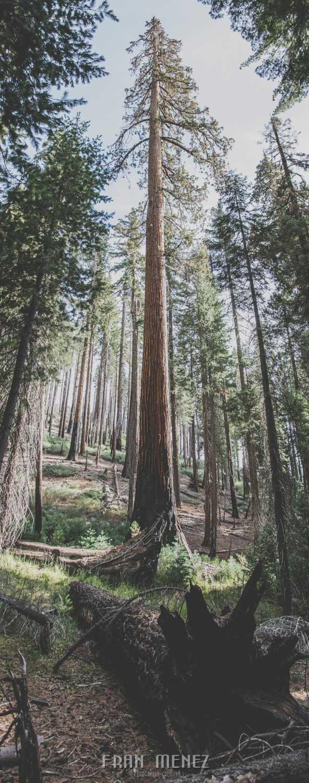 Ruta de los Parques del Oeste. Viajar a EEUU Yosemite Grand Canyon Monument Valley Zion San Francisco Las Vegas Los Angeles Lake Powell 162