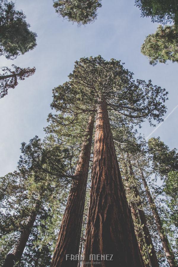 Ruta de los Parques del Oeste. Viajar a EEUU Yosemite Grand Canyon Monument Valley Zion San Francisco Las Vegas Los Angeles Lake Powell 163