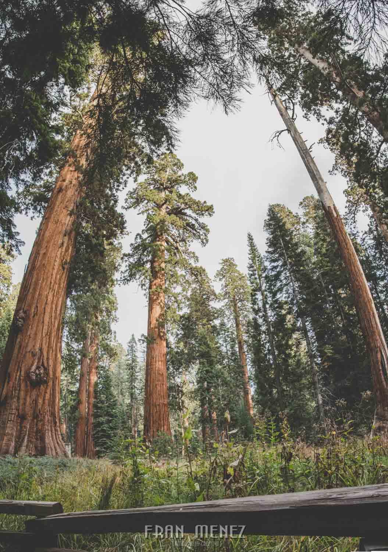 Ruta de los Parques del Oeste. Viajar a EEUU Yosemite Grand Canyon Monument Valley Zion San Francisco Las Vegas Los Angeles Lake Powell 164