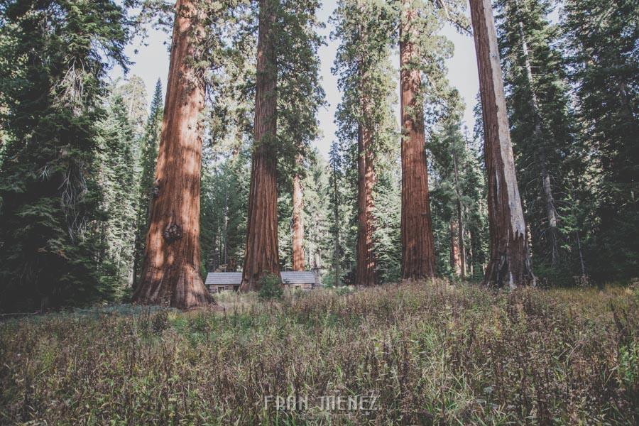 Ruta de los Parques del Oeste. Viajar a EEUU Yosemite Grand Canyon Monument Valley Zion San Francisco Las Vegas Los Angeles Lake Powell 165