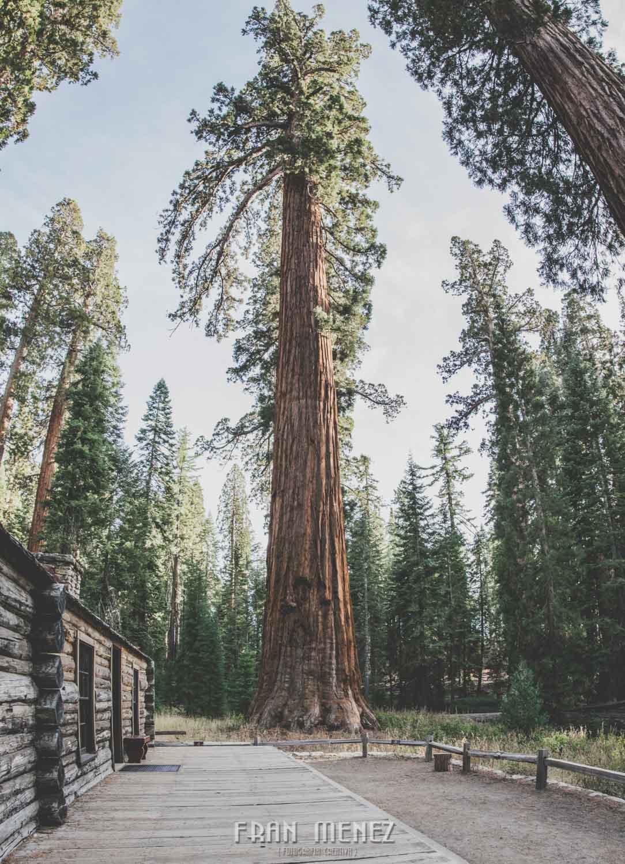 Ruta de los Parques del Oeste. Viajar a EEUU Yosemite Grand Canyon Monument Valley Zion San Francisco Las Vegas Los Angeles Lake Powell 166