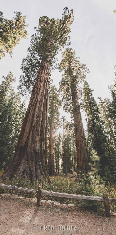 Ruta de los Parques del Oeste. Viajar a EEUU Yosemite Grand Canyon Monument Valley Zion San Francisco Las Vegas Los Angeles Lake Powell 167