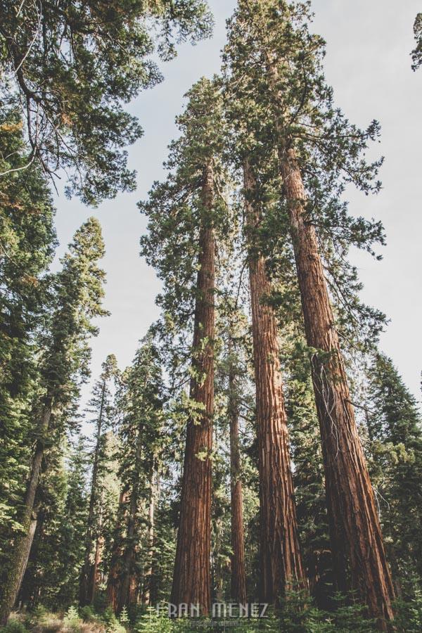 Ruta de los Parques del Oeste. Viajar a EEUU Yosemite Grand Canyon Monument Valley Zion San Francisco Las Vegas Los Angeles Lake Powell 168