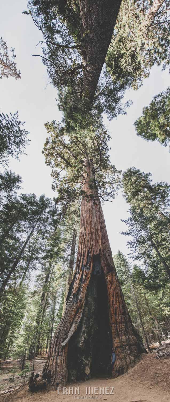 Ruta de los Parques del Oeste. Viajar a EEUU Yosemite Grand Canyon Monument Valley Zion San Francisco Las Vegas Los Angeles Lake Powell 169