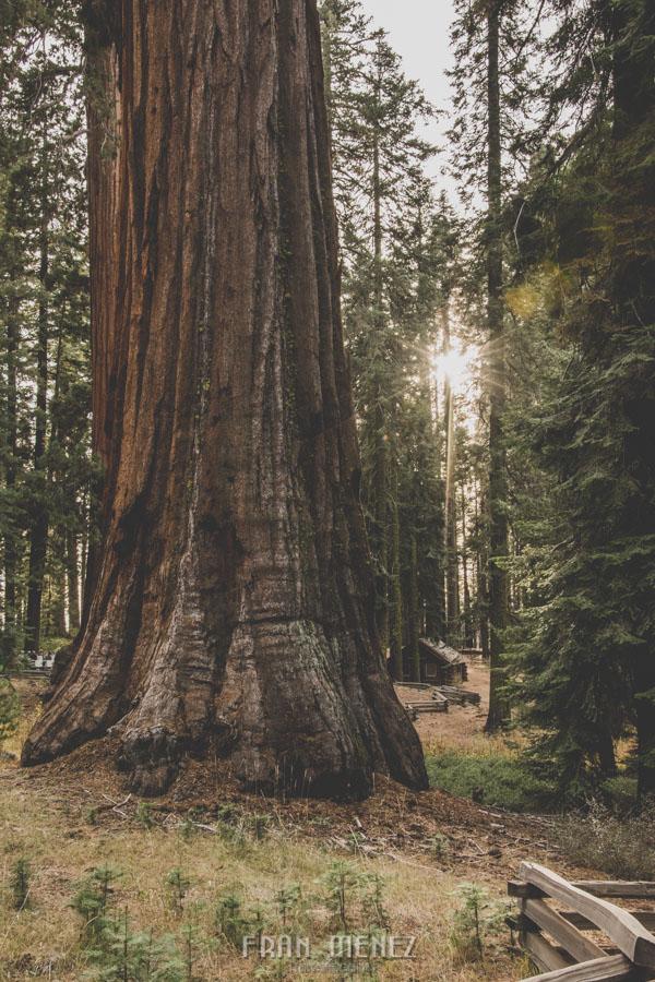 Ruta de los Parques del Oeste. Viajar a EEUU Yosemite Grand Canyon Monument Valley Zion San Francisco Las Vegas Los Angeles Lake Powell 171