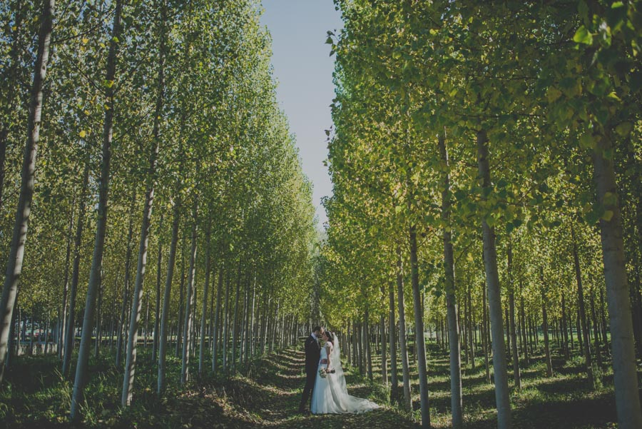 Fotografias-de-boda-la-finca-granada-priscila-y-adolfo-fran-menez-fotografos-de-boda-35