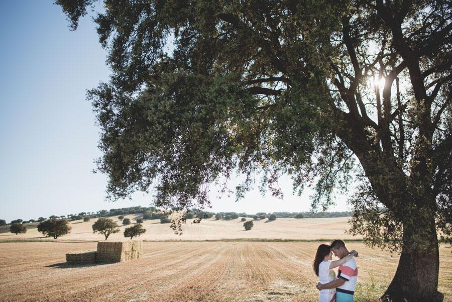 Marina y Dani. Fotografias de Pre Boda en el campo. Fran Menez Fotografo de Bodas 4