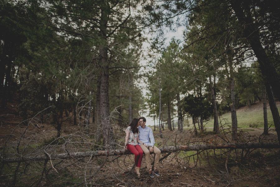 David e Inma. Pre Boda en Primavera en la Sierra de Huetor Santillan. Fran Ménez Fotógrafos de Boda en Granada. 15
