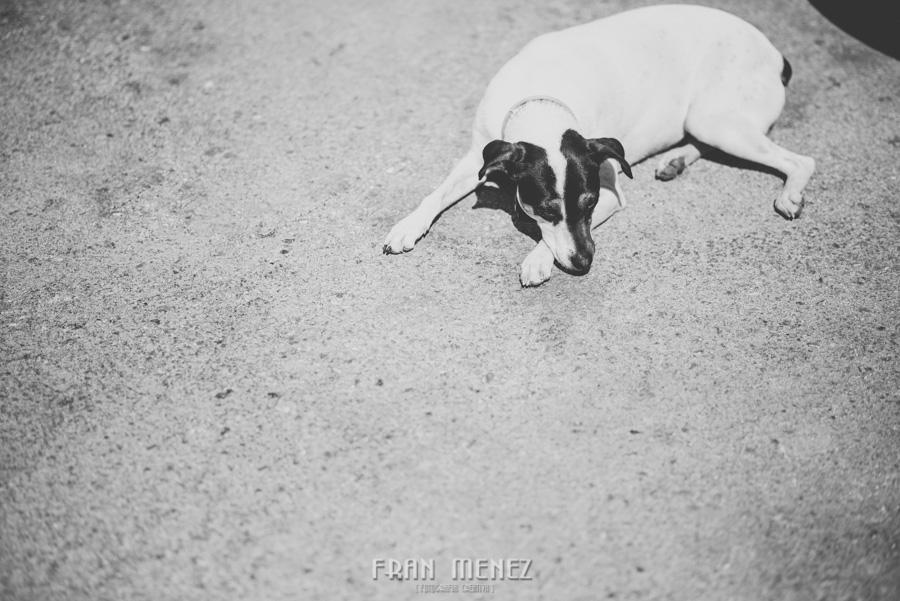 Fran Menez Fotografo de Bodas en Jerez del Marquesado. Fotografo de Bodas en Guadix. Fotoperiodismo de Bodas. Hacienda del Marquesado 30