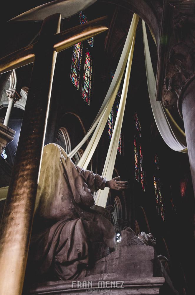 Fotografías de Paris. Fran Ménez Fotógrafo en Paris. 17 Notre Dame
