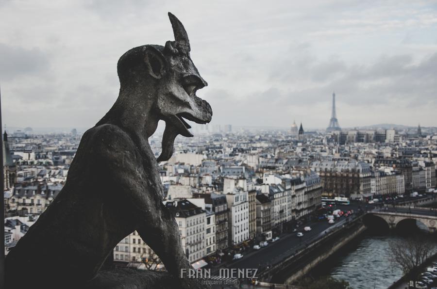 Fotografías de Paris. Fran Ménez Fotógrafo en Paris. 39 Gárgola Gargoyle Gorgouille Notre Dame