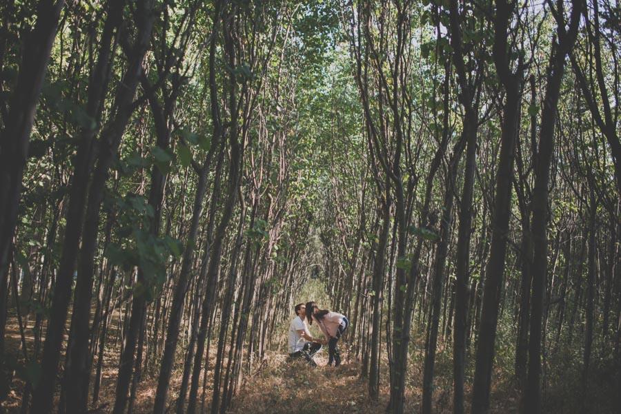 Fotografos en Granada. Fran Ménez Fotografía Natural y Divertida. Fotógrafo de Bodas 5