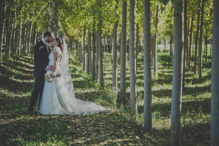 Fotografias-de-boda-la-finca-granada-priscila-y-adolfo-fran-menez-fotografos-de-boda-34