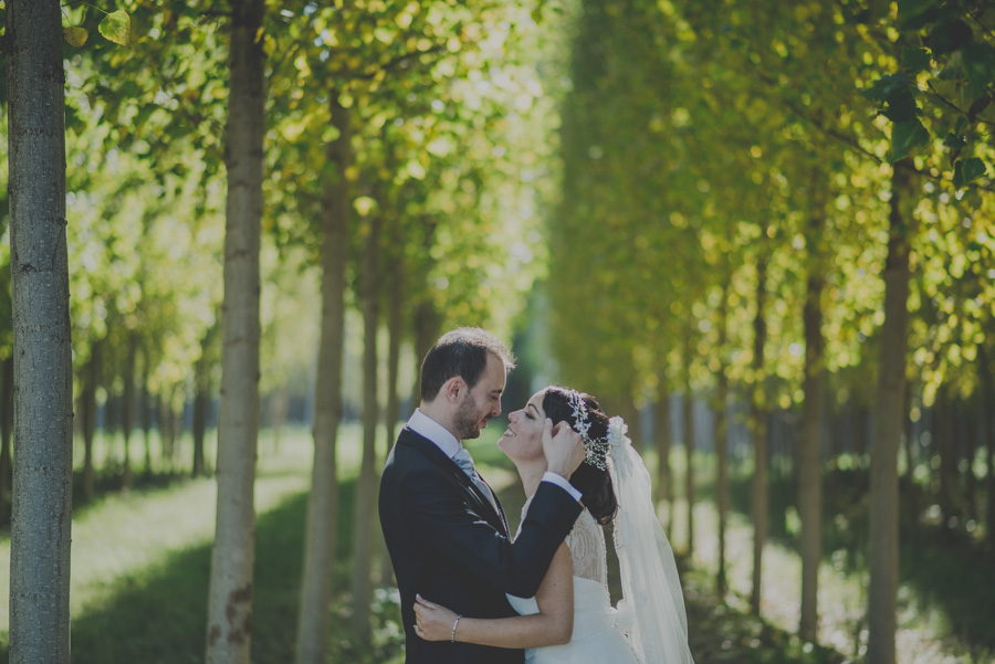Fotografias-de-boda-la-finca-granada-priscila-y-adolfo-fran-menez-fotografos-de-boda-38