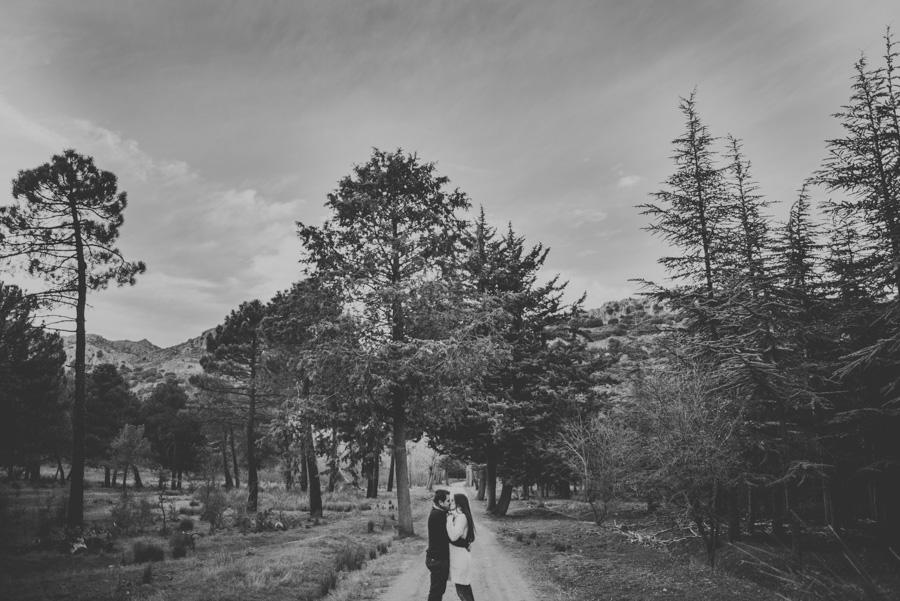 Meritxell y Juanjo. Pre Boda en el Bosque. Fran Menez Reportajes de Boda Granada 17