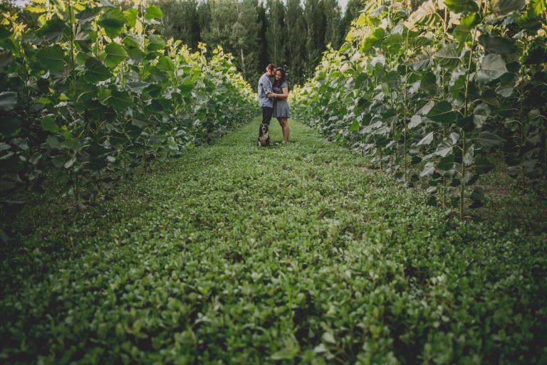 Reportaje de Pareja en el entorno de la Vega de Granada. Carla y Pedro. Fran Ménez Fotógrafo en Granada 21