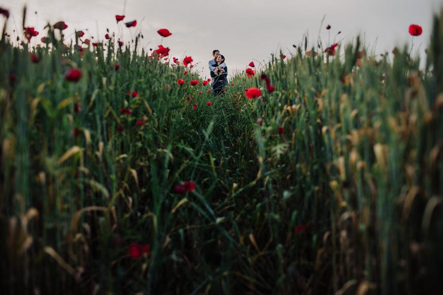 Fotografias de Pre Boda entre amapolas. Carmen y Jorge. Fran Ménez Fotógrafo de Bodas 16
